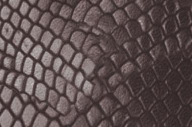 Leguanoptik-mokka