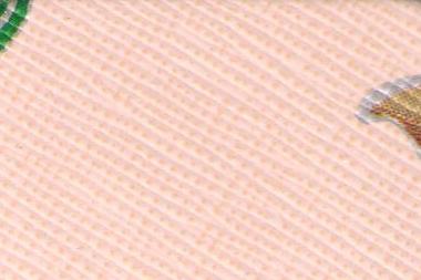 Lilium-crema7RbutqDOSIYFP