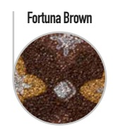 fortuna-brownObCgoSqveCm2F