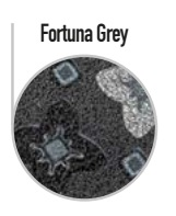 fortuna-greay