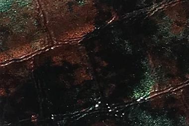 lucidi-sfumato-verde