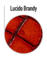 lucido-brandyL5EmY2Nbugn80