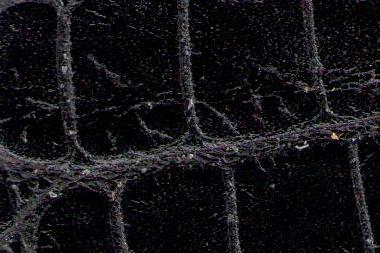 Malibu-blackgSFiv6XTQmeXO