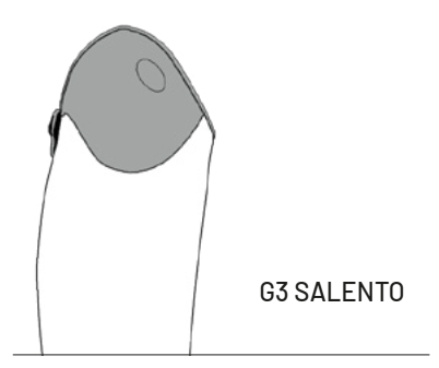G3-Salento