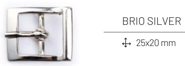 brio-silver
