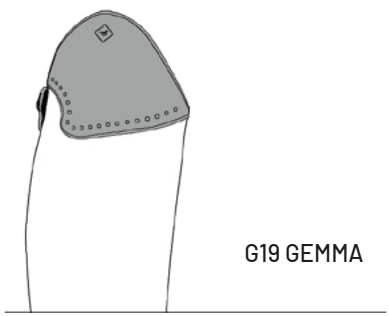 G19-Gemma