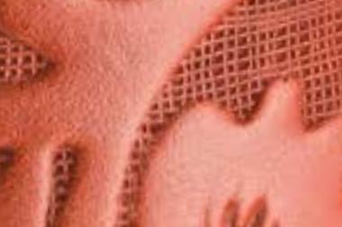 Dolcefiore-EMS-cotto
