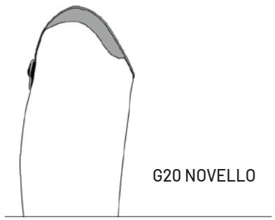 G20-Novello