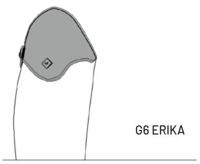 G6-Erika