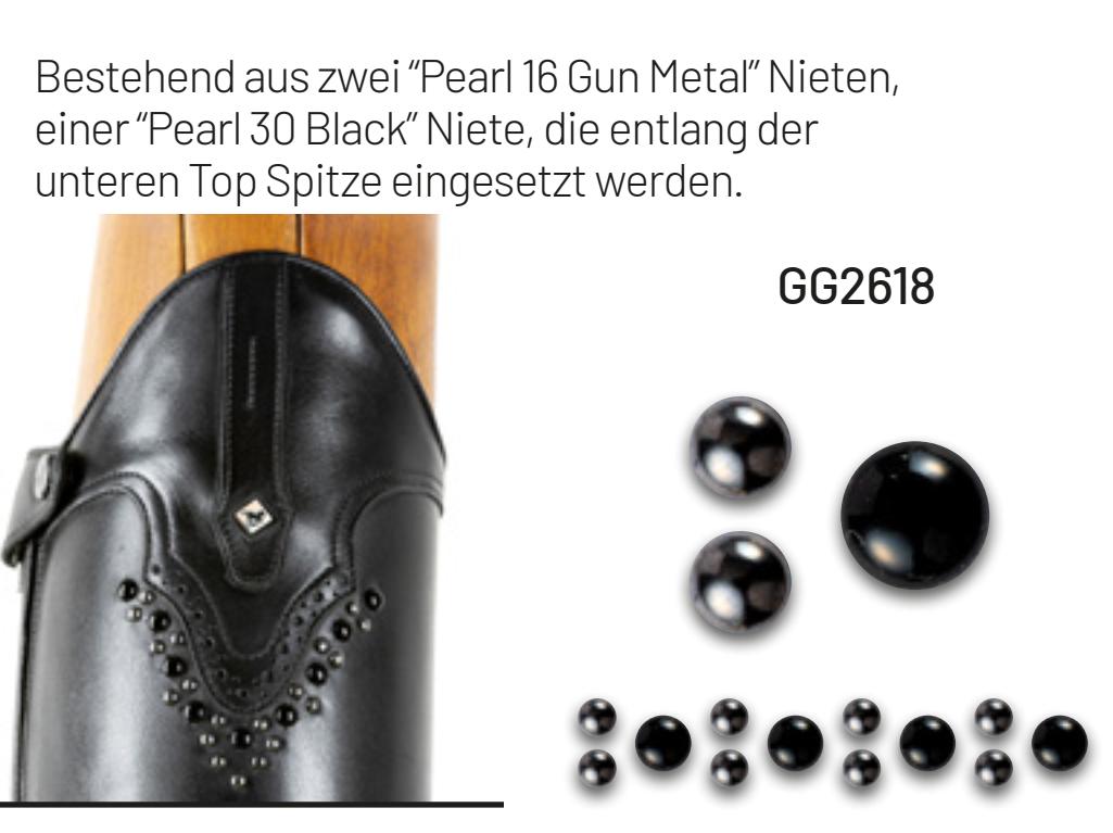 GG2618-Info