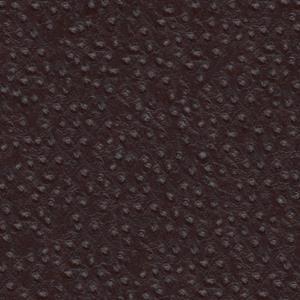 straussenprint-dunkelbraun
